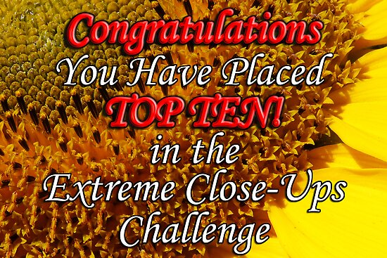 top 10 extreme close up banner by dedmanshootn