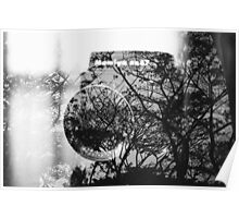 Camera and trees double exposure Poster