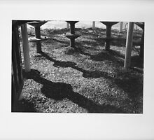 Shadows within the Playground by sevastra87
