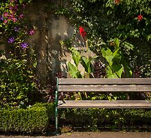 Salzburg: The Bench by Jacinthe Brault