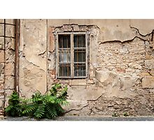 Praha: The Old Wall Photographic Print