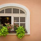 Passau: The Window by Jacinthe Brault
