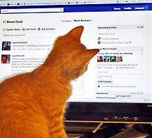 I wish I could find a cure for this facebook addiction I have by Penny Rinker