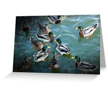 Painted Ducks Greeting Card