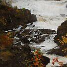 Autumn Cascade by Joanne  Bradley