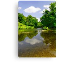 The River Wye Downstream, at Upperdale  Canvas Print