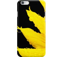 Sunflower - iPhone iPhone Case/Skin