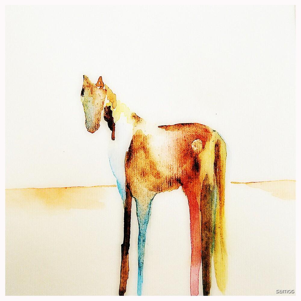 Painted Desert by samos