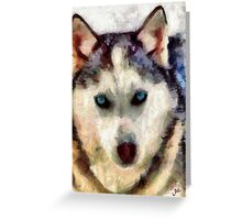 Siberian Husky - Sacha Greeting Card