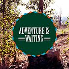 Adventure is Waiting by Diana Nevarez