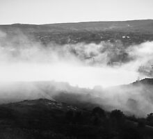 Fogtown II St John's by Stephen Rowsell