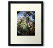 Photo 2.3: Yggdrasil Framed Print