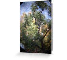 Photo 2.3: Yggdrasil Greeting Card