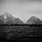 where eagles have been by shutterbug261