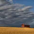 Country Skies by Steph Peesker