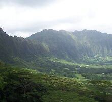 On The Road To Kaneohe II, Hawaii by Richard J. Bartlett