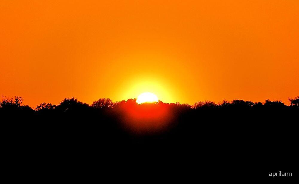 Texas Sunset by aprilann