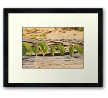 MCC Serenity at the Beach Framed Print