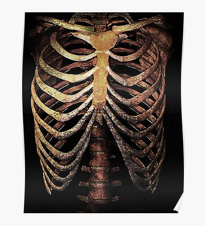 RIB CAGE TEE Poster