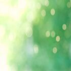 Summer bokeh 2 by netza