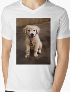 Lucky Mens V-Neck T-Shirt