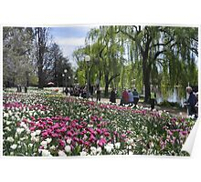 Floral Festival - Floriade - Canberra Poster