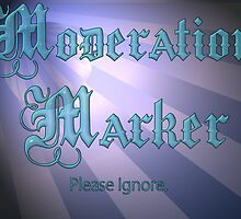 Moderation Marker by Nicole W.