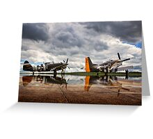 ~Flying Legends~ Greeting Card