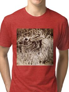Cottontail Rabbit, Bunny, in Grass, Sepia, Grunge Tri-blend T-Shirt