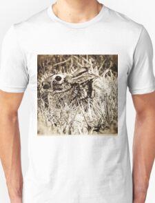 Cottontail Rabbit, Bunny, in Grass, Sepia, Grunge Unisex T-Shirt