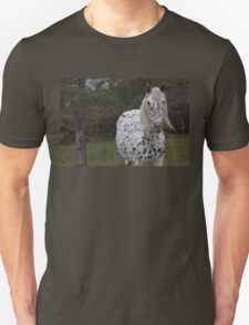 Spotted Horse  Unisex T-Shirt