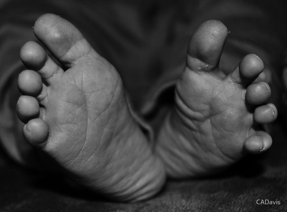 Precious Little Feet by CADavis