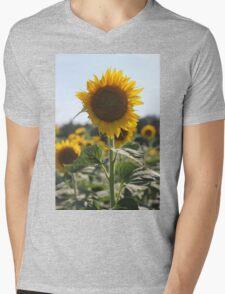 South Carolina Sunflower Mens V-Neck T-Shirt