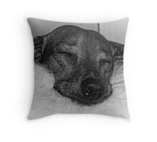 Closeup of Dachshund Sleeping Serenely, Black and White Throw Pillow