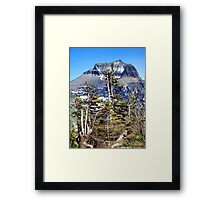 Windblown (Glacier National Park) Framed Print