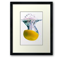 Grapefruit Back Splash Framed Print