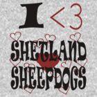 I <3 Shetland Sheepdogs by veganese