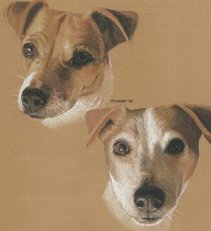 Lady and Bailey, Jack Russells Sticker
