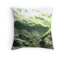 In the old mine Throw Pillow
