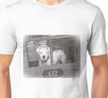 White Boxer Looking Out Red Door, Black and White Unisex T-Shirt