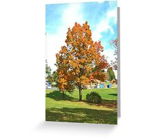 Fall 2012 Collection 11 Greeting Card