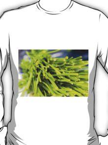 Green Herbs T-Shirt