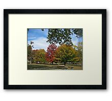 Fall 2012 Collection 24 Framed Print
