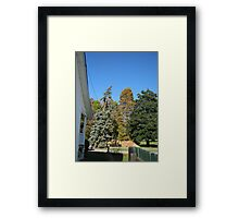 Fall 2012 Collection 39 Framed Print