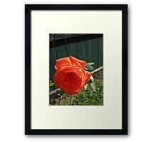 Fall 2012 Collection 41 Framed Print
