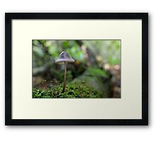 The fragile strength of nature Framed Print