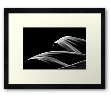Tranquility III 1142 Framed Print