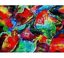 Colorful Fall leaves, watercolor Photographic Print