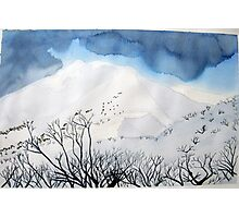 Mt. Feathertop  in winter (1) Photographic Print