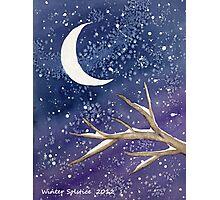 Winter Solstice 2012 Photographic Print